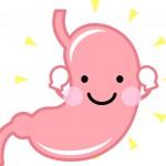 健康的な胃袋